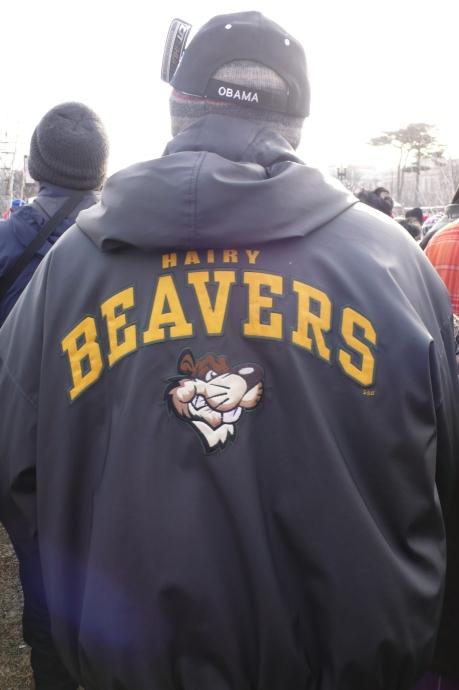 hairy-beavers