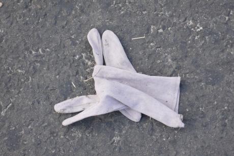 lavender-glove